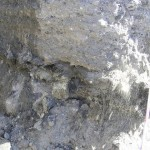 asbestos waste mixed with soil