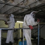 removal of blue crocidolite asbestos